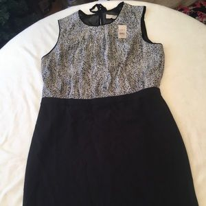 Ann Taylor Dress- Brand New with Tags